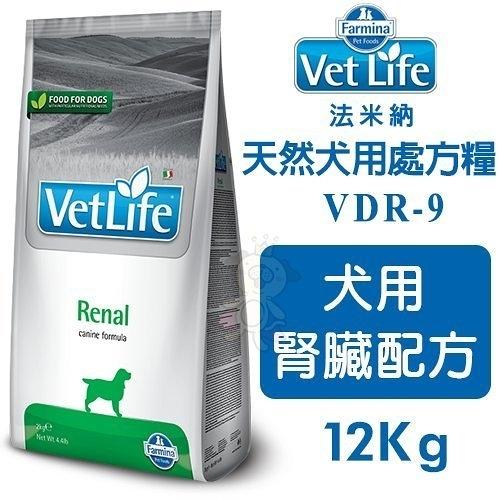 *KING*【免運】Farmina法米納 Vet Life天然犬用處方糧 犬用腎臟配方12Kg【VDR-9】