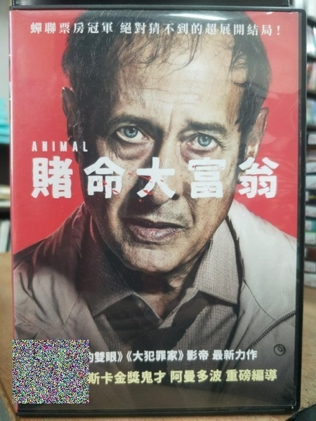挖寶二手片-P01-019-正版DVD-電影【賭命大富翁】吉勒摩法蘭賽拉 卡拉彼特森(直購價)