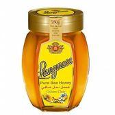 智慧有機體 德國朗尼斯黃金蜂蜜 250g/罐