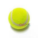 成功牌一般網球(高彈性/訓練球/耐打)