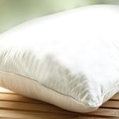 MORBIDO 五星級優品羽毛枕 72×48cm-箱購