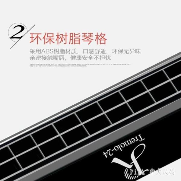 口琴初學者成人兒童學生入門單復音C調24孔嘉德瑞專業演奏級樂器 JY10344【Pink 中大尺碼】