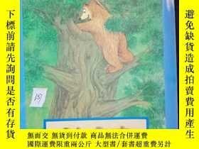 二手書博民逛書店Baby罕見Bear,s Hiding Place..Y1249