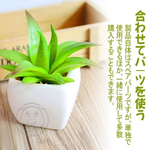 【培菓平價寵物網】仿真多肉植物小蘆薈