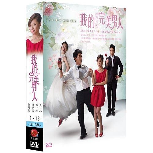 我的完美男人 DVD ( 天心/楊一展/楊千霈/路斯明 ) - 金鐘獎最佳女主角 天心得獎作