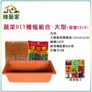 【綠藝家】蔬菜DIY種植組合-大型(型號...