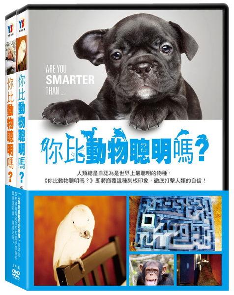 你比動物聰明嗎? DVD (OS小舖)