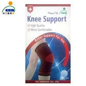 *醫材字號*【Fe Li 飛力醫療】HA系列 專業雙色護膝(H20)