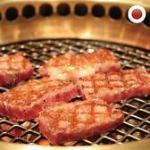 日本純種黑毛和牛A5霜降厚切燒烤片1包組(250公克/片)