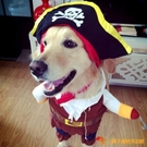 寵物狗衣服海盜變身裝貓咪衣服搞笑萬圣節圣誕節服飾【小獅子】