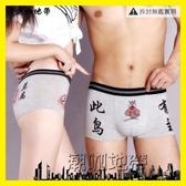 2條套裝韓版男女情侶內褲可愛純棉創意性感情趣誘惑個性男士褲頭