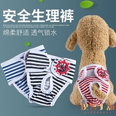 寵物狗狗生理褲衛生褲月經褲母狗生理期內褲姨媽褲子【倪醬小舖】