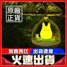 [24hr-原廠正品現貨]  奇幻精靈彩...