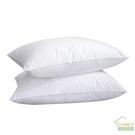 枕頭 酒店枕芯一對裝家用護頸椎助睡眠雙人枕頭單人學生宿舍兒童低整頭-快速出貨