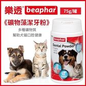 *KING  WANG*荷蘭beaphar 樂透《礦物藻潔牙粉》75g/罐 多種礦物質 幫助犬貓口腔健康