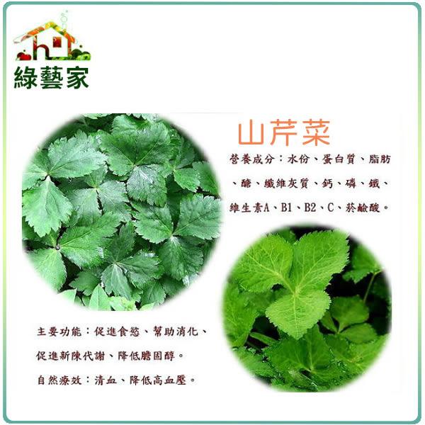【綠藝家】大包裝F05.山芹菜(鴨兒芹)種子25克