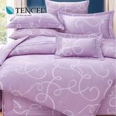 【貝淇小舖】60支頂級天絲銀纖維加大6x6.2尺 鋪棉兩用被床罩七件組 附正天絲吊卡 佩特拉