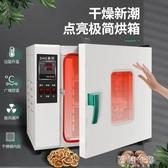 食物烘乾機 電熱恒溫鼓風干燥箱烘箱工業恒溫烤箱實驗室真空烘干箱商用烘干機 【美好時光】