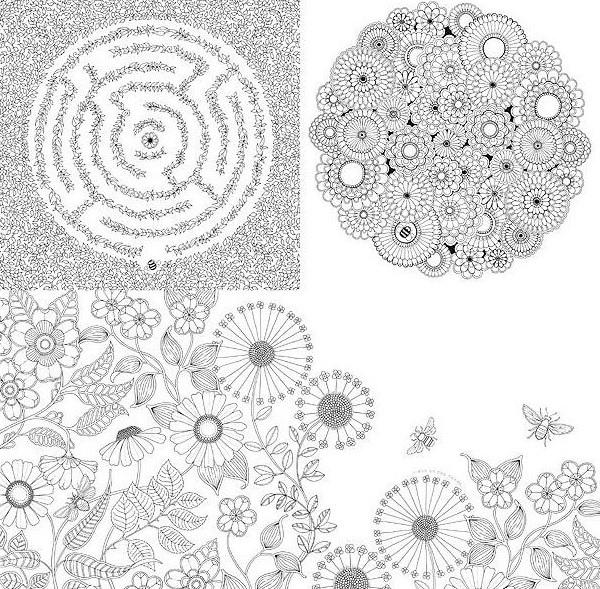 現貨韓文版 秘密花園 Secret garden 彩繪本 描繪本 手繪著色本舒壓成人大人插畫