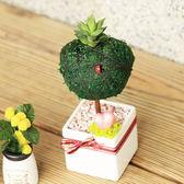 【迎光】心形幸福苔樹-白