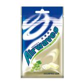 Airwaves口香糖袋裝28g-冰釀葡萄--單包【合迷雅好物超級商城】