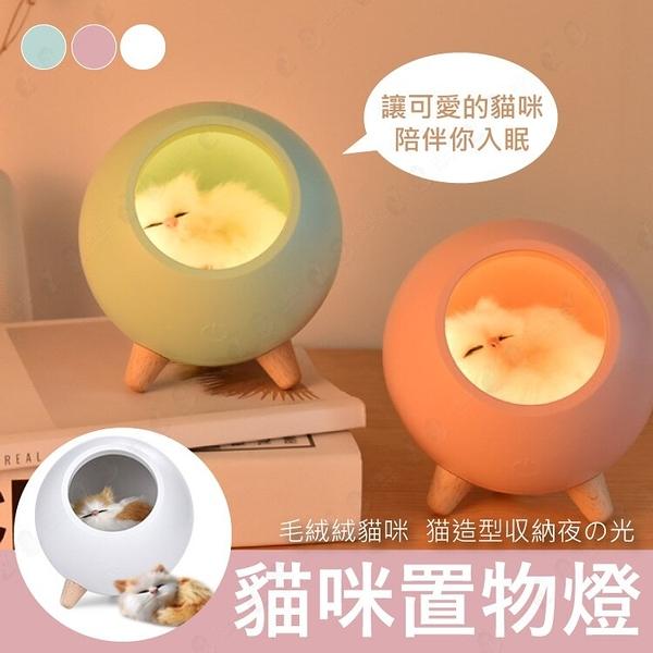 【毛茸茸貓咪夜燈】夜間小夜燈 可調光 三段式調光 置物架置物盒 夜燈-白/粉/綠【AAA6464】預購