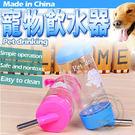 掛式不銹鋼頭寵物飲水器450ml顏色隨機