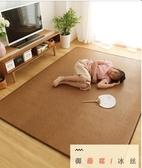 地毯 客廳臥室陽台榻榻米地墊夏季藤席爬行墊子家用(聖誕新品)