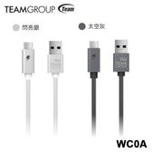 [富廉網] 【Team十銓科技】Type-C USB3.1 鋁合金編織偵測發光充電傳輸線 WC0A 閃亮銀/太空灰