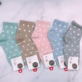 點點襪 純色糖果襪 百搭經典不敗款 普普風 韓國進口襪子
