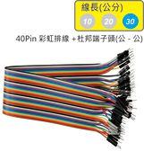 40Pin彩虹排線 + 雙頭杜邦端子 公頭 - 公頭( 線長30公分 )