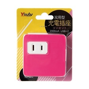 YOULY 悠麗 電器 高效能 2A 雙USB+2P雙充電插座