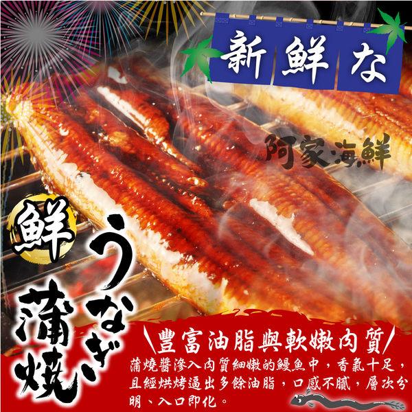 日式蒲燒鰻魚片 (250g±10%/片)#加熱即食#日式#厚實#蒲燒醬汁#肉質軟嫩#鰻魚#蒲燒鰻