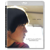 Blu-ray岩井俊二之青春三部曲青春電幻物語BD 市原隼人/蒼井優