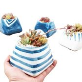 CARMO 海洋/櫻花系列陶瓷盆(含土+植物) 十款多肉植物花盆盆栽【ME14002】