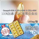 100%加拿大ONC高純度TG型魚油10...