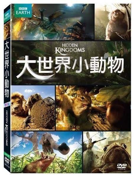 BBC 大世界小動物  DVD (購潮8)