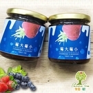 樂園樹.莓大莓小-無農藥草莓藍莓雙果醬(共兩瓶) ﹍愛食網