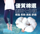 【5B2F 五餅二魚】優質棉選 素面七分...