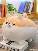 毛絨玩具柴犬抱枕娃娃可愛抱著睡覺趴趴狗床上柯基公仔少女心玩偶QM『艾麗花園』