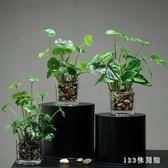 北歐仿真植物假綠植擺件客廳餐桌茶幾辦公室小盆栽室內裝飾花多肉 AW17585【123休閒館】