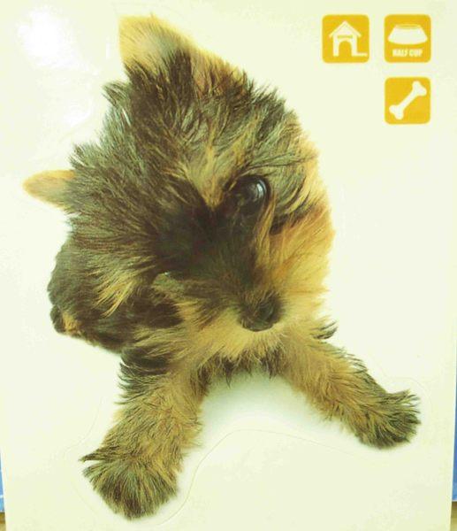 【震撼精品百貨】新大頭狗_The Dog~貼紙-約克夏黃