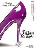 (二手書)5克拉的Mr. Right