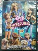 挖寶二手片-0B02-077-正版DVD-動畫【芭比姐妹之狗狗大冒險】-國英語發音(直購價)