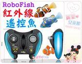 麗嬰兒童玩具館~RoboFish 歡樂寵物魚紅外線遙控魚小魚水族箱樂游游附魚缸