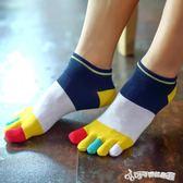 五指襪男 五指襪純棉男防臭透氣舒適吸汗優質全棉分腳趾襪子 Cocoa