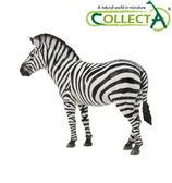《 COLLECTA 》平原斑馬╭★ JOYBUS玩具百貨