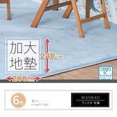 超大地墊 地毯200X240 可洗滌吸水記憶地墊 寶寶爬行墊│ 腳踏墊