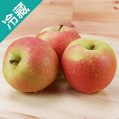 【日本】蜜桃 TOKI 蘋果 46 / 箱【愛買冷藏】