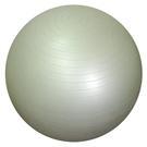 運動健身球-55公分(附贈送1支打氣筒)...